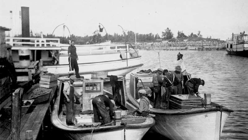 "This would be the kind of scene that would have presented at the Black River Station daily as the "" whitefish boats"" returned to the stations loaded with the prized hump back whitefish known in the markets of Chicago and New York as ""Selkirk Whites."""
